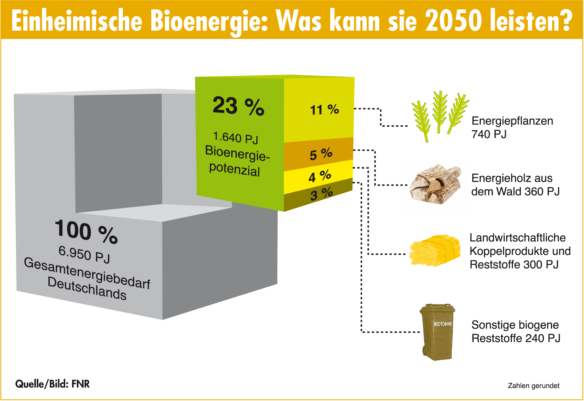 Bioenergie Potenzial WŸürfel