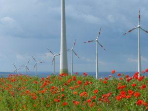 Windpark in Sachsen-Anhalt © Windpark Druiberg