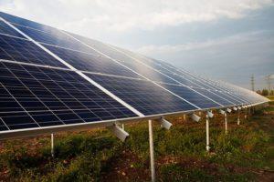 Faktencheck des WWF zur Energiewende klärt über Falschinformationen zur Energiewende auf