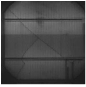 Beispiel für einen Zellbruch, Quelle: Envaris GmbH