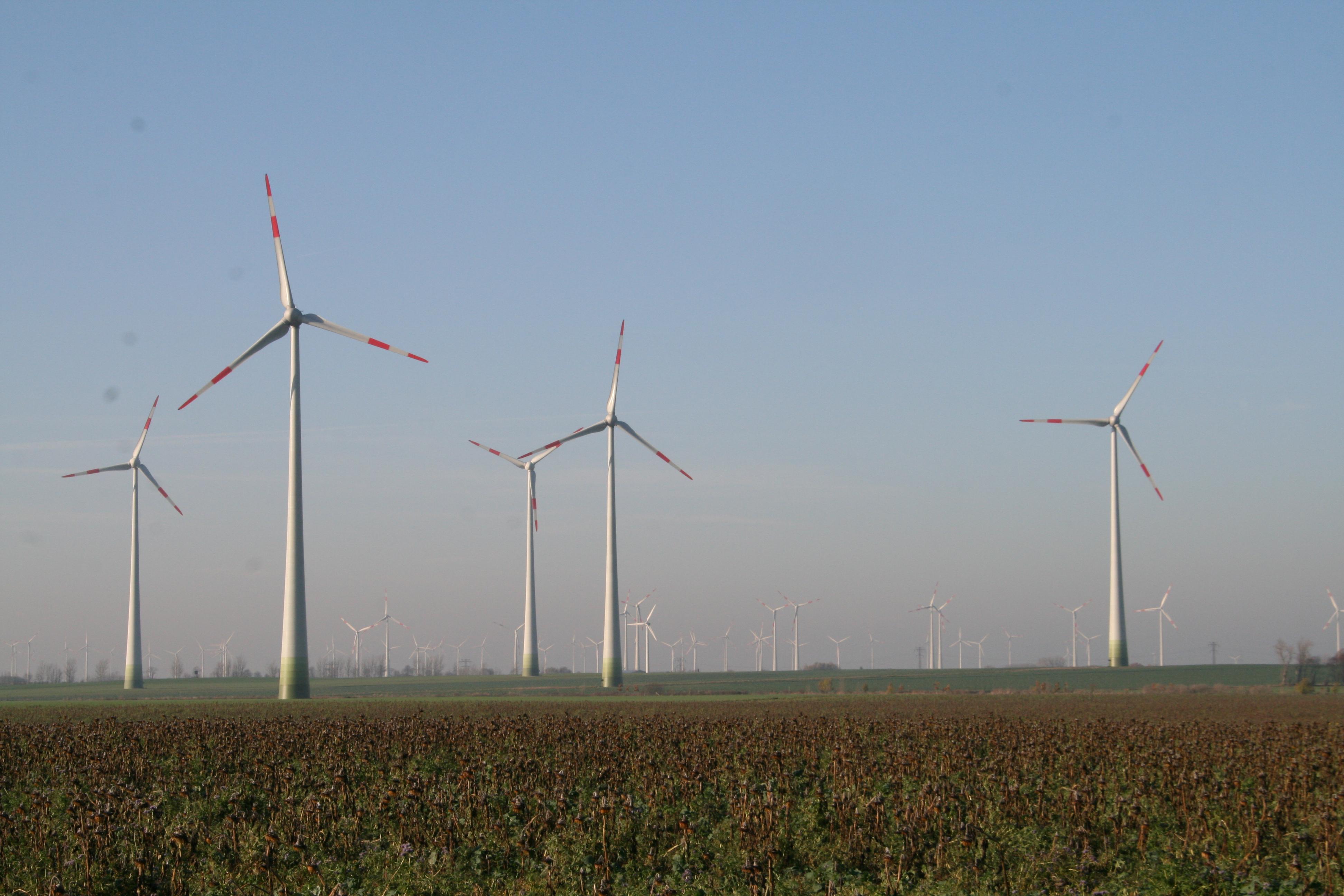 Gegenwind für Strompreisbremse auch aus der Energiewirtschaft