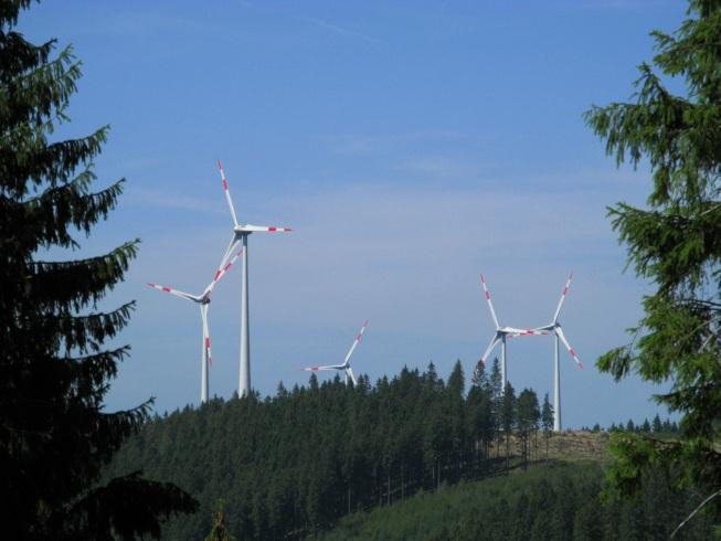 Windpark im Rothaargebirge © Almut Witzel