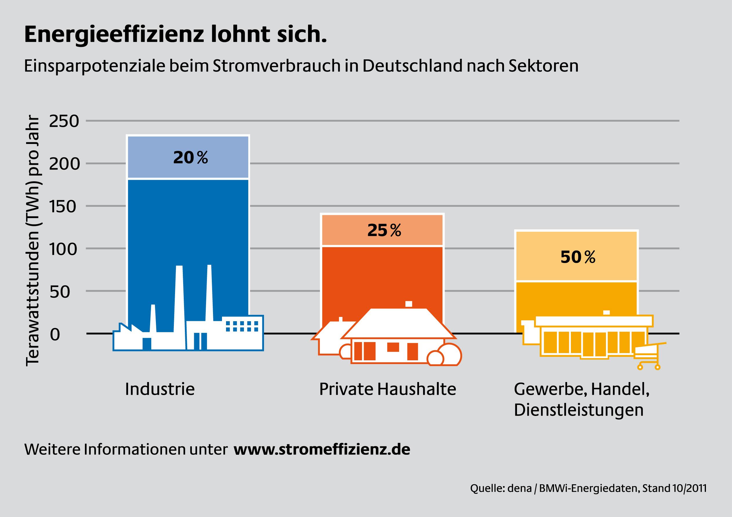 Einsparpotenziale beim Stromverbrauch in Deutschland