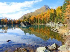 Letzte Farben vor dem Winter in der Schweiz, Foto: daniel stricker  / pixelio.de