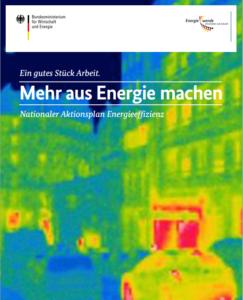 Nationaler Aktionsplan Energieeffizienz (NAPE)