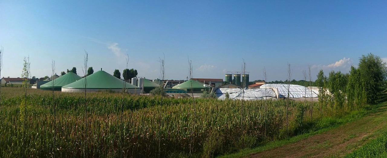 Biogas-Anlagenbetreiber verzeichnen Verluste in Millionenhöhe durch EEG Reform 2014