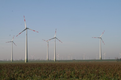 Negative Entwicklung von Arbeitsplätzen bei Erneuerbare Energien in 2014