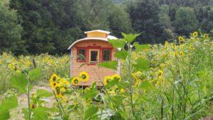 Crowdfunding für energieautarkes Tiny House im Wildniskulturhof